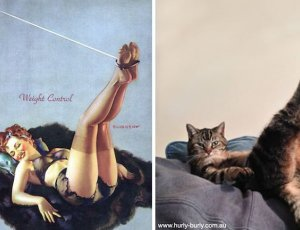 Pin-up VS chats