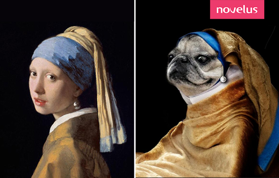 Vermeer-lajeunefillealaperle